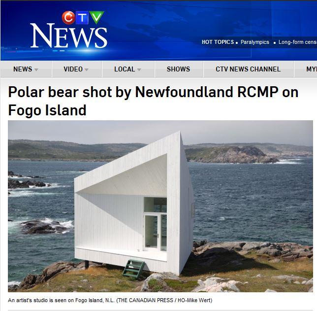 Fogo polar bear shot_CTV May 2 2016