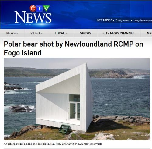 Fogo polar bear shot_CTV May 2 2016